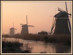 3 windmills in the morninglight