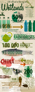 Wetlands Infographic