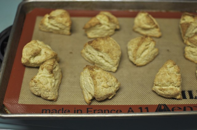 cream scones, baked