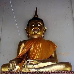 20101122_1976 Wat Chiang Man, วัดชียงมั่น