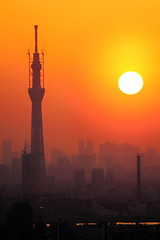 Tokyo Sky Tree at Sunset (Ichikawa, Chiba, Japan)