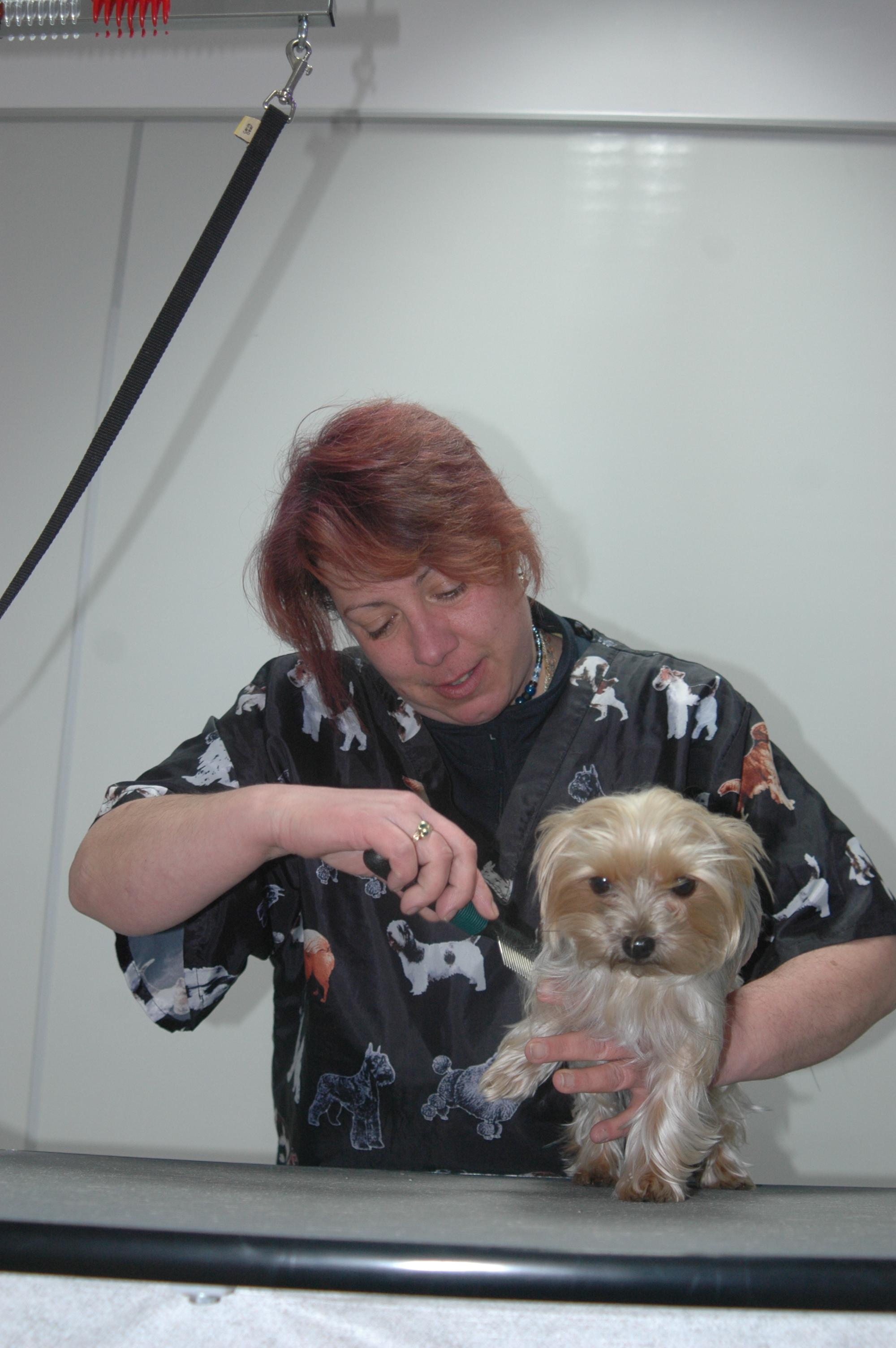 Dog Grooming Jones Creek Baton Rouge