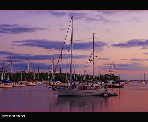 marina boats miami cityhall american panamerican yatch coconutgrove cocowalk onemillion dinnerkey abigfave xmaxprocessing maimicityhall xmax0405