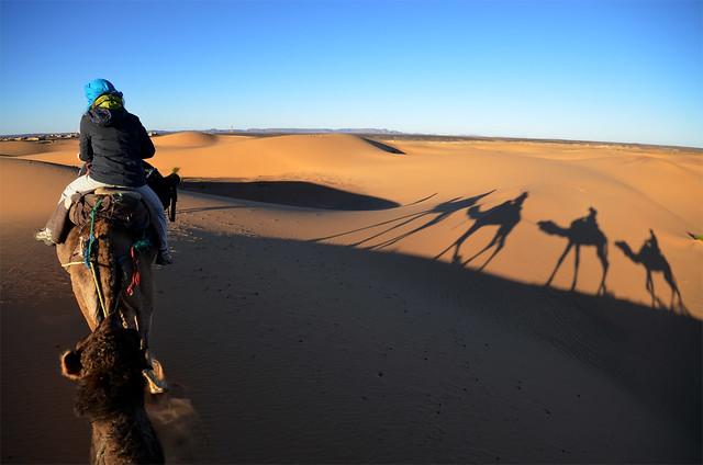Ruta en dromedario por el desierto del Sahara