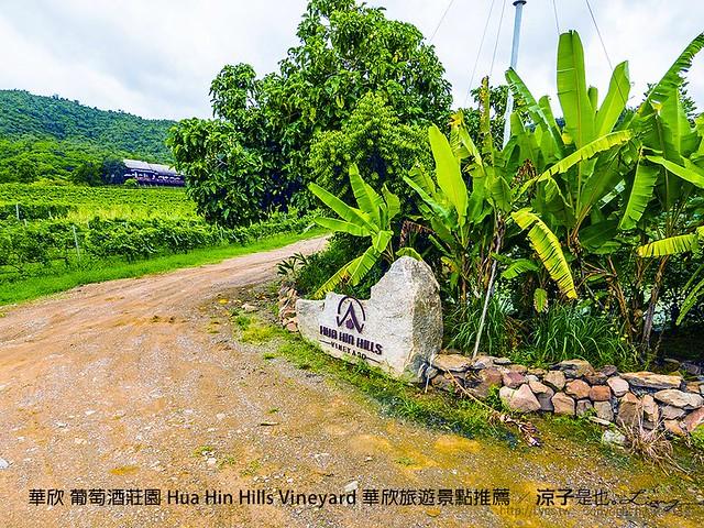 華欣 葡萄酒莊園 Hua Hin Hills Vineyard 華欣旅遊景點推薦 67