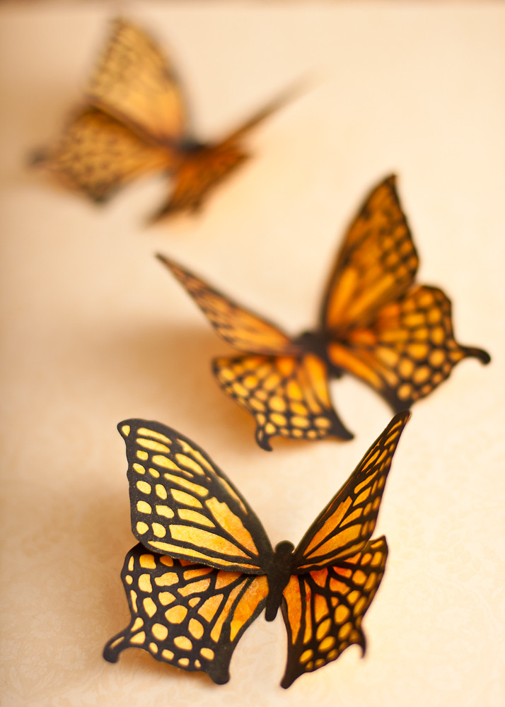 3d butterfly wall decor 3d butterfly wall decor for 3d butterfly decoration