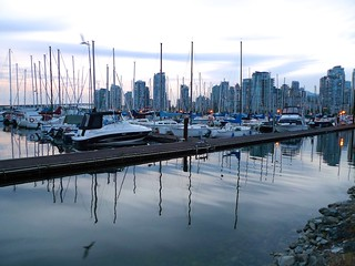Seagull - Beautiful Vancouver