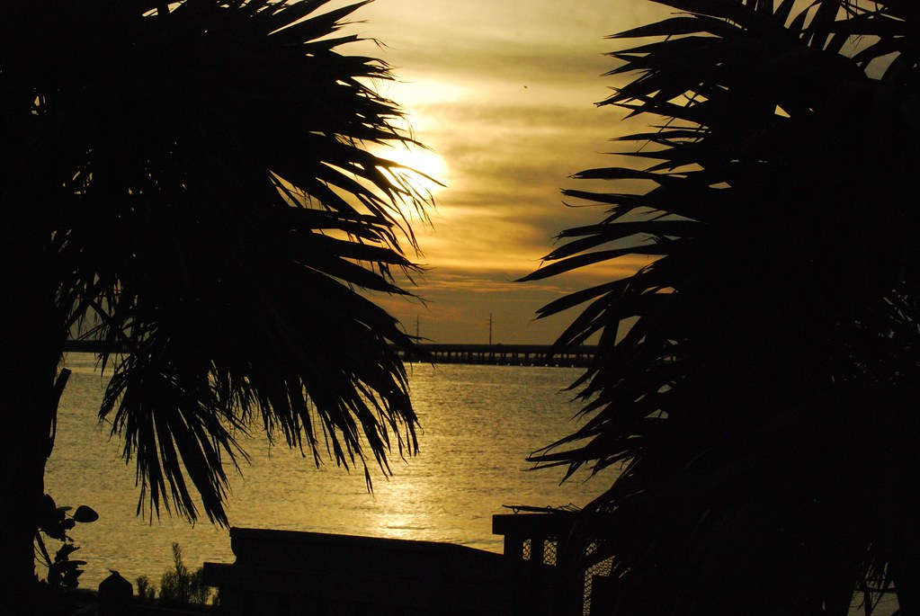 Florida 2010 454