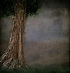 Texture/Background 20 - Premade 35