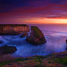 Shark Fin Cove by pendeho
