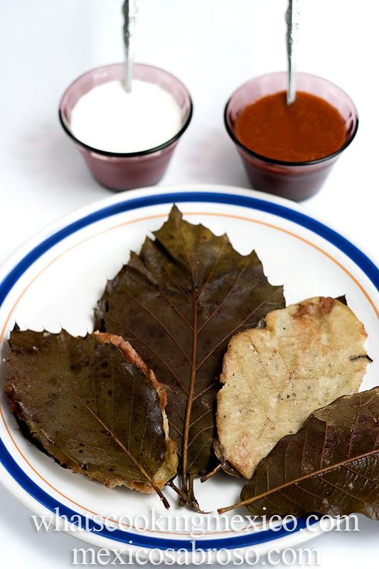 encino_leaf