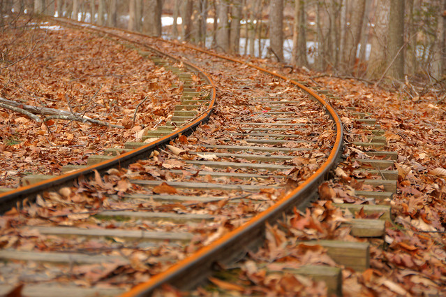 Winter rust at Burke Lake Park miniature train tracks