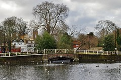 Picture of Locale Carshalton