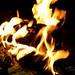 Small photo of Backyard fire