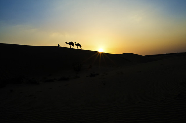 A Tryst with the Thar Desert