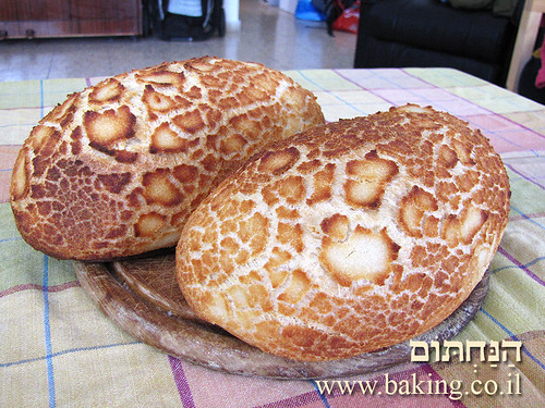 """לחם הולנדי """"מנומר"""" - Dutch Crunch Bread - Tijgerbrood"""