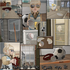 .:LBM:. Playing Ball in the house Prank kit