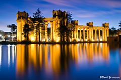 Palace of Fine Art twilight water reflection long exposure study