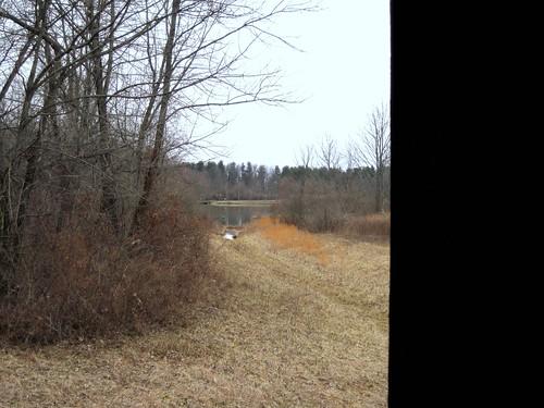 park bridge winter leaves creek woods cloudy walk hike covered brook slaterun