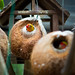 Coconut Bird House / SML.20110202.7D.07198