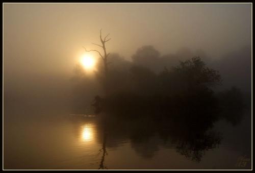 fog sunrise texas houston bayou pasadena armandbayou wanam3