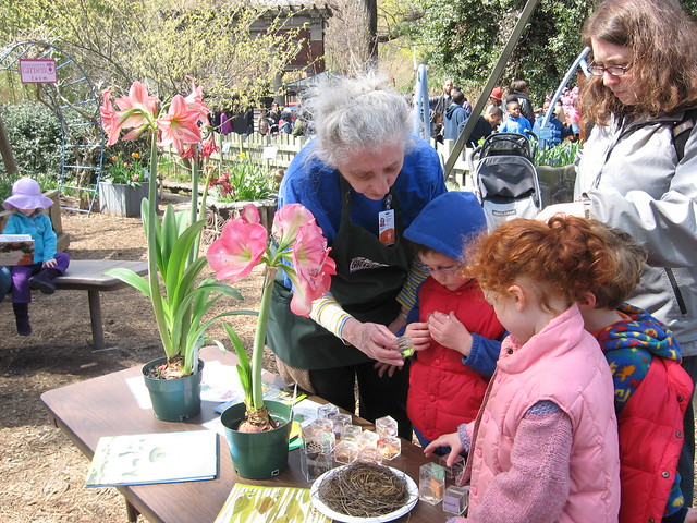 Spring Discovery Workshop