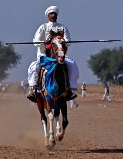 Punjab Cavalry