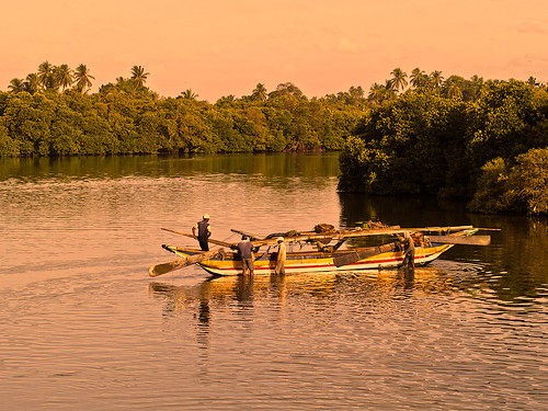voyage trip travel sunset vacation orange fish verde green birds river boats vacances fisherman holidays colorful asia indianocean lifestyle olympus viajes viagem srilanka zuiko raise negombo bidaia gorkanelson