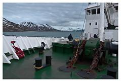 Spitsbergen (Svalbard) June 2008