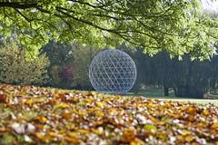 <p>campus, lake area, autumn</p>