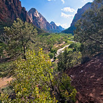 Zion National Park (USA_20081005_DSC_2541)