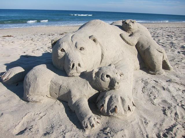 Delray Beach Bear family