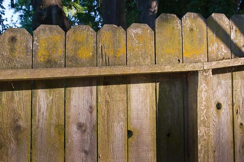 Fence Falling Slowly