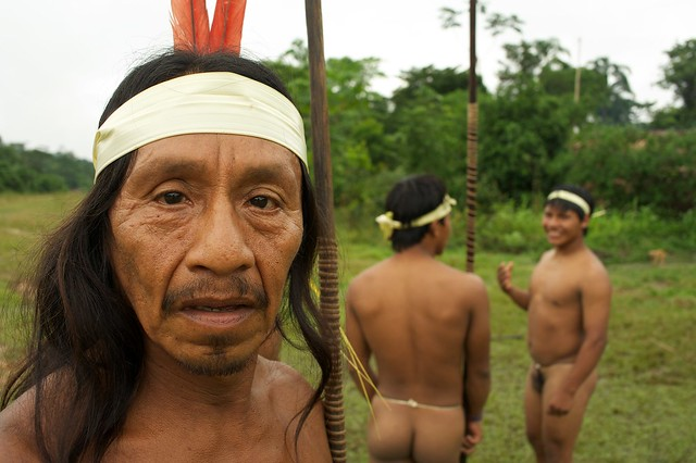 huaorani of ecuador research paper Check out our top free essays on shaka zulu to help enga § the amish § huaorani of ecuador § bedouin § zulu § kurds cultural research paper.