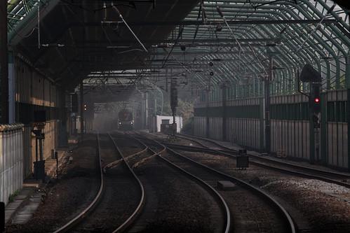 Noise suppression walls surround the tracks