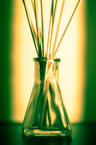 Reed Diffuser, photo courtesy of John Liu