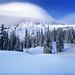 Mt. Rainier Winter Wonderland by David Shield Photography