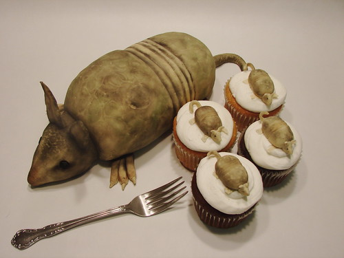 Armadillo Cakelet with coordinating cupcakes