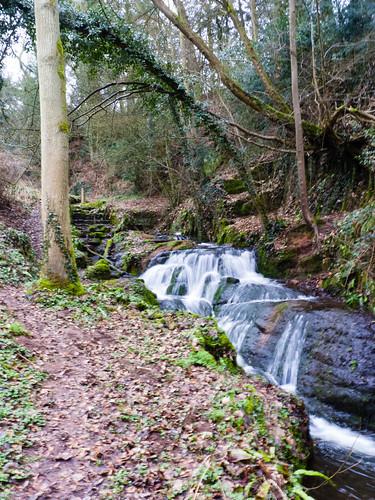 Badger Dingle: waterfall
