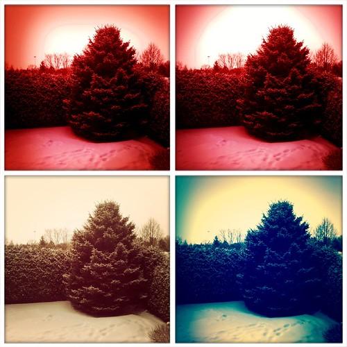 4 Views Of Snow