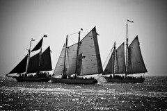 2011 Key West Ft Z Taylor CW sailboat 2 bw