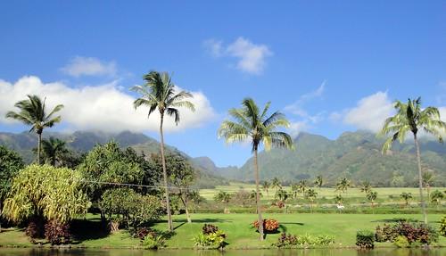 travel blue trees vacation sky mountains green water island hawaii maui cropped 500views zipline picnik wailuku 2011 westmauimountains mauitropicalplantation goldstaraward worldtrekker mauiziplinecompany