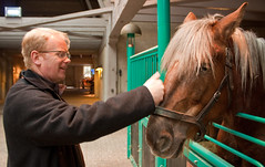 Gregory and a horse that shares his hairstyle