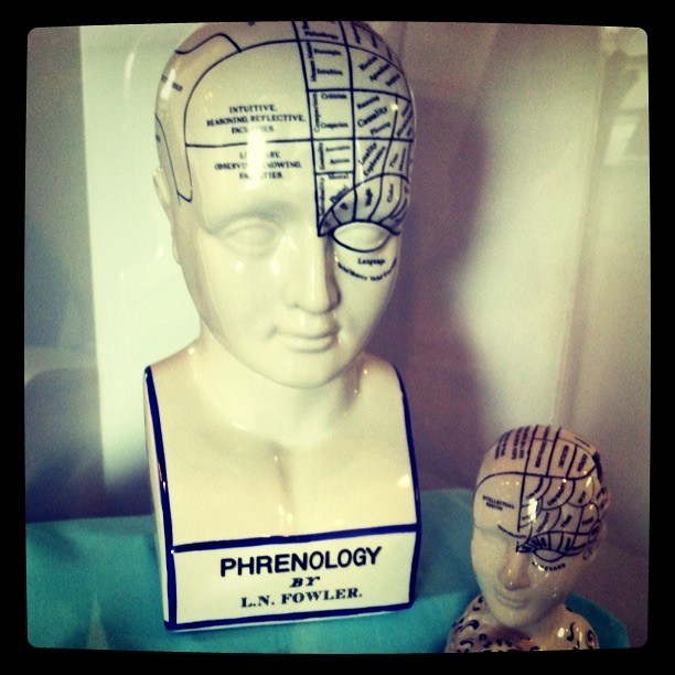 Header of phrenology