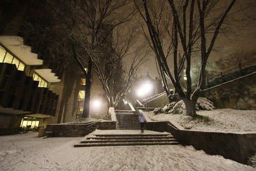 Washington D.C. was hit by a hard-to-miss thunder snow storm Wednesday night