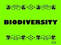 Buzzword Bingo: Biodiversity