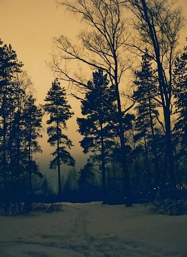 film night landscape fuji pentax p30n c200 gamta naktis peizažas tauragė