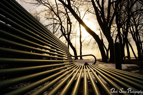 morning trees winter sun snow ontario canada cold forest sunrise bench pov sony belleville dslr a500