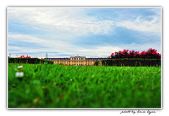 A Palace Between The Greens: Schönbrunn