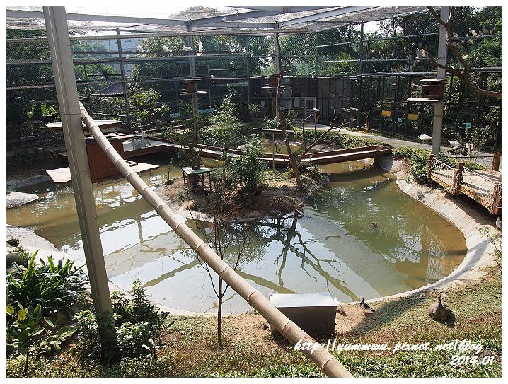 森林鳥花園50